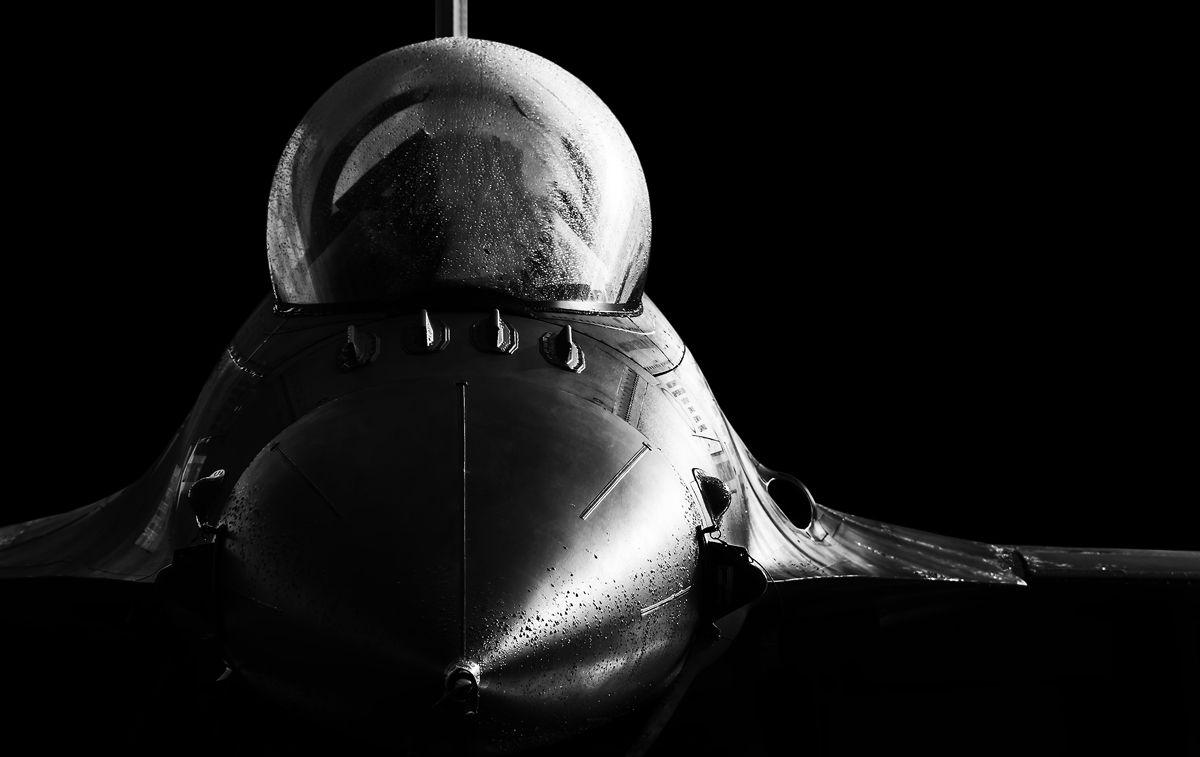 Las sombras del halcón