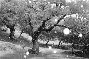c9_snowing