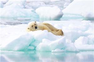 Refreshing 'siesta'