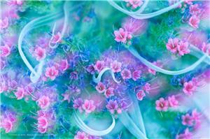 Mar de Flores