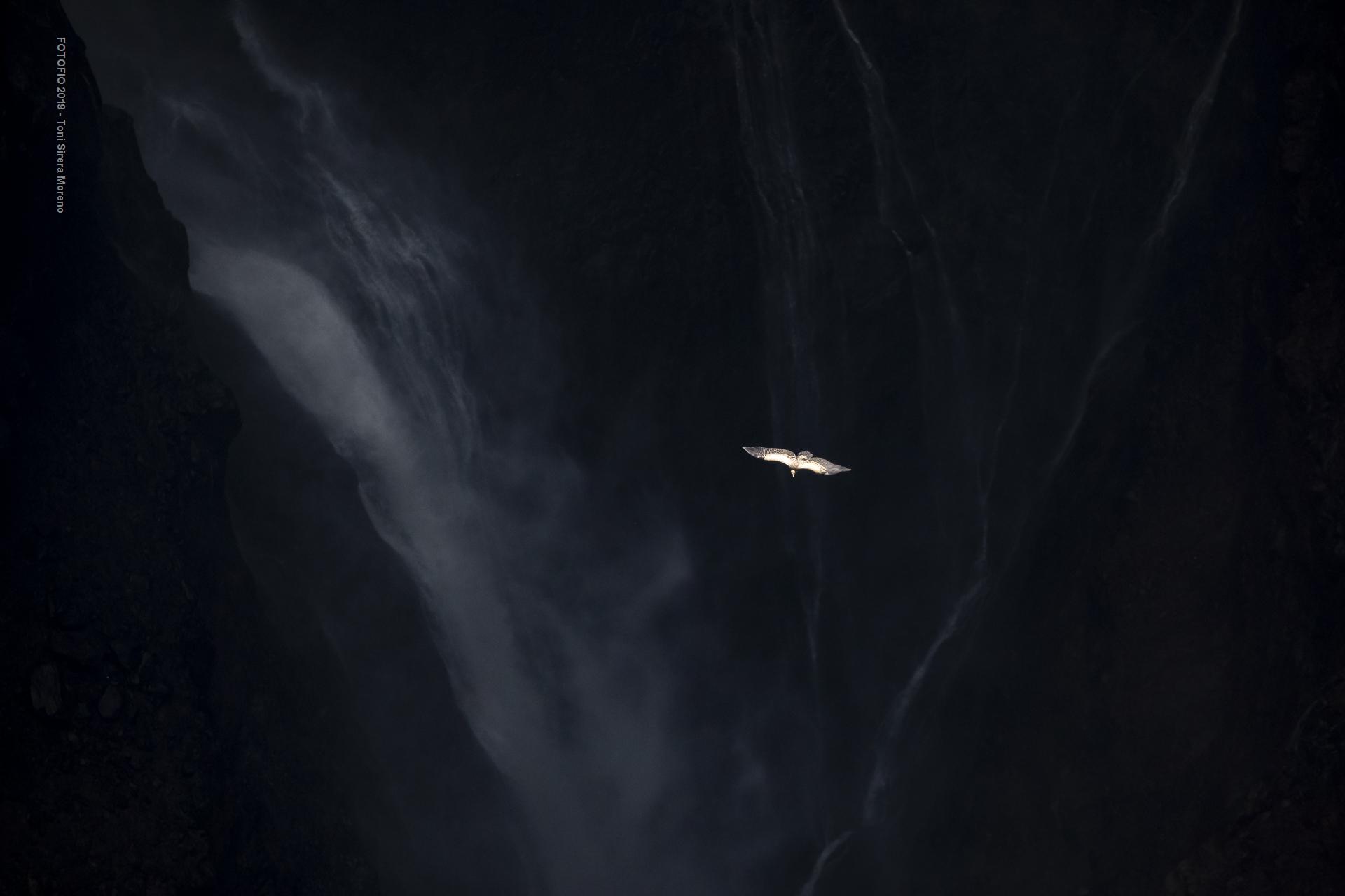 C2_Volando_sobre_Mordor