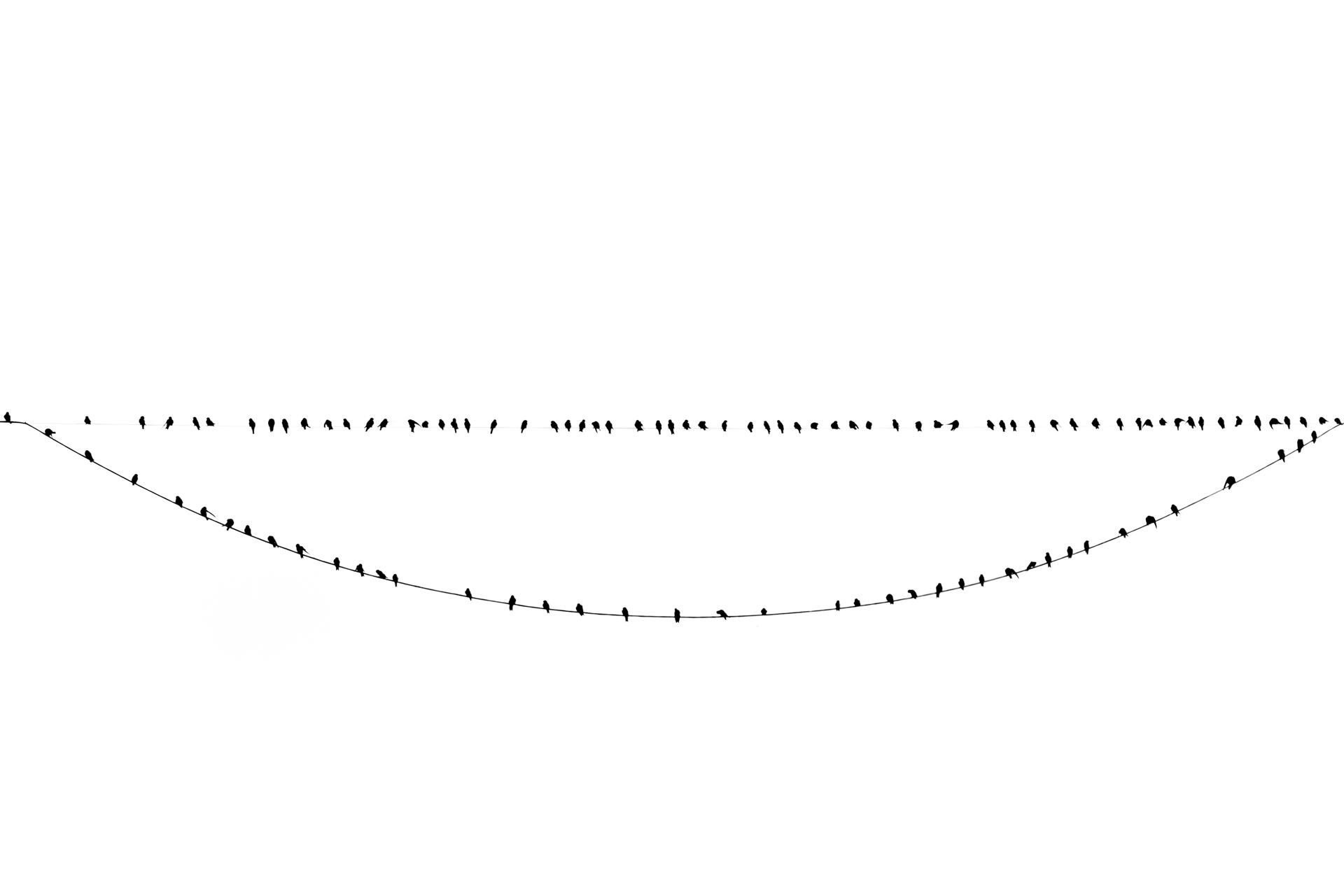 C4_sonrisa