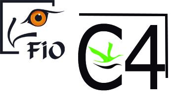 C4 - VISIÓN ARTÍSTICA DE LAS AVES