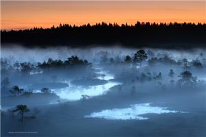 05-Landscapes