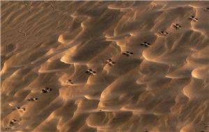 Dibujos en la arena vI.